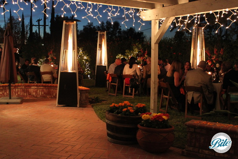 Evening reception in backyard. A beautiful evening to be outdoors