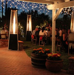 Backyard Wedding Evening Reception