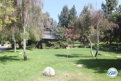 View of the Japanese tea house across the front lawn at Brand Park Library