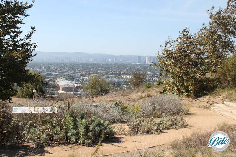 Native Plant Gardens - overlooks all of Los Angeles and has beautiful views of the sunset. Perfect for a wedding ceremony or outdoor event