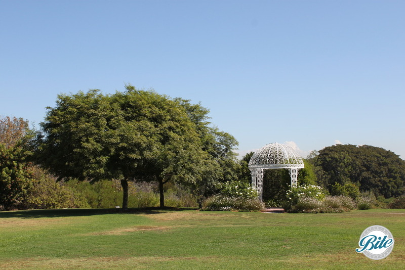 South Coast Botanic Garden Upper Meadow