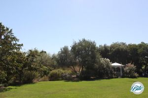 Lower Meadow