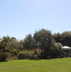 South Coast Botanic Garden Lower Meadow
