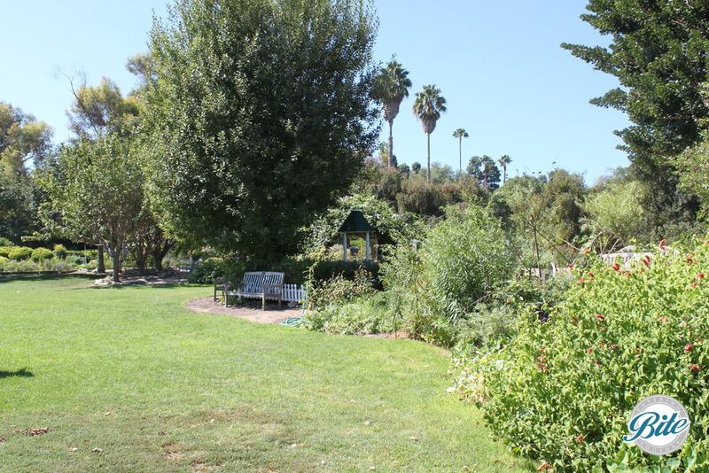 South Coast Botanic Garden Lower Meadow Bench
