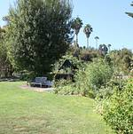 South Coast Botanic Garden Lower Meadow Bench