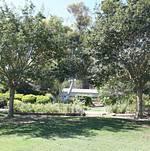 South Coast Botanic Garden Lower Meadow Walkway