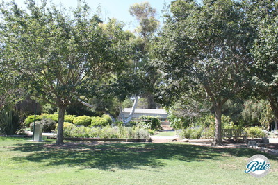 South Coast Botanic Garden Lower Meadow Walkway