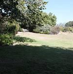 South Coast Botanic Garden Amphitheater Lawn