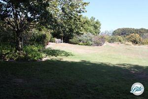 Amphitheater Lawn