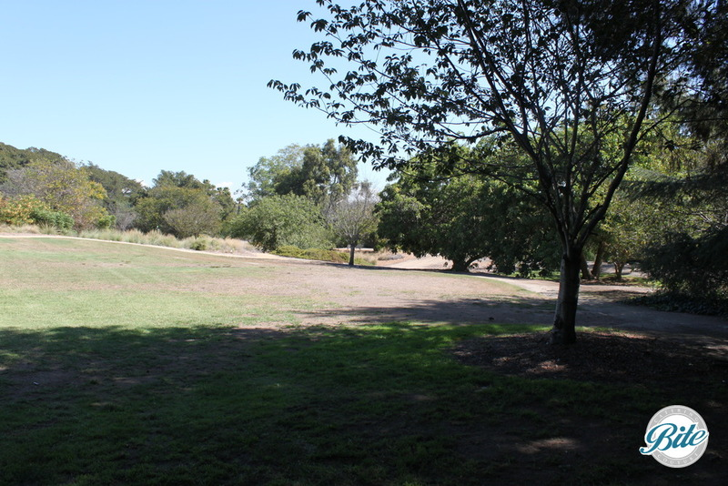 South Coast Botanic Garden Amphitheater Lawn 2