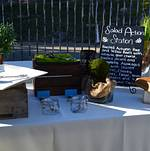 Malibu Hills Backyard Salad Station