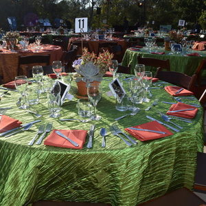 Outdoor tables for fundraising dinner