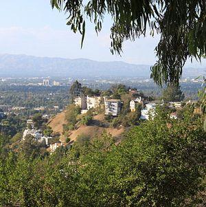 TreePeople View