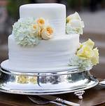 Intimate home reception wedding cake