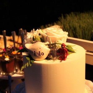Beautiful dessert display with a small cake cutting cake