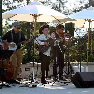 Bluegrass band playing by the pool