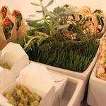 Pasta Salad in Individual Takeout Box