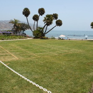 Back lawn with view of beach