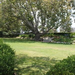 Lower Meadow @ Adamson House