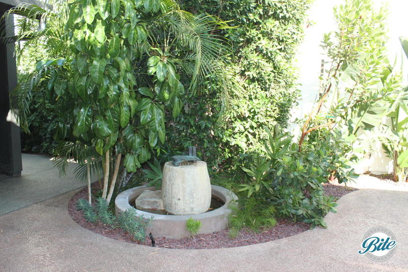 The beautiful garden courtyard is a beautiful setting with many touches including this tucked away fountain