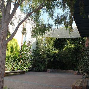 Courtyard Garden @ Millwick