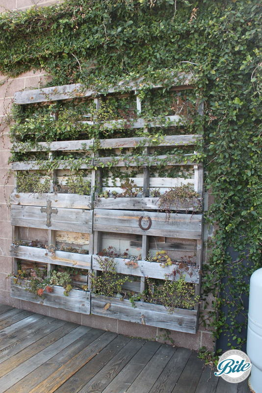 Rustic wooden planter adds a green accent at the entrance to Smoky Hollow Studios