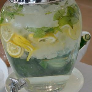 Lemon-Cucumber Mint Spa Spring Water