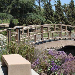 Picturesque Wooden Bridge @ Grace Simons Lodge