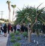 Guests Enjoying Wende Museum Courtyard