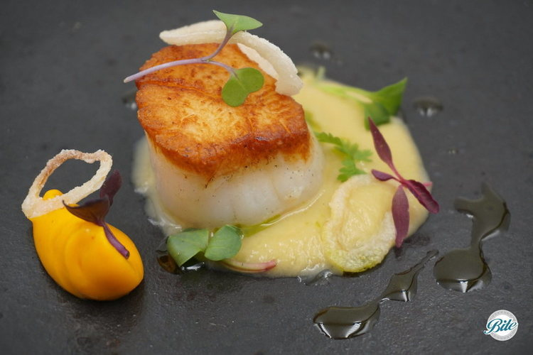 Scallop plated with brandied carrot puree, leek velouté, fennel oil, garnished with cotton fried shallots. On grey plate.