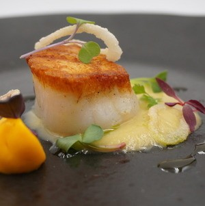 Plated Poached Scallop