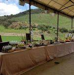 Beautiful Outdoor Buffet in Vineyard