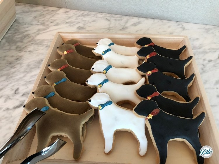 Fun dog shaped cookies, including decorative collar.  Specialty cookie made for a pet adoption/ services client.