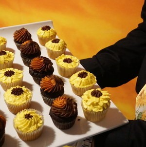 Sunflower Themed Cupcakes
