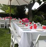 Backyard Bridal Shower Table Setting
