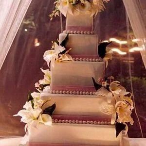 Wedding Cake under canopy