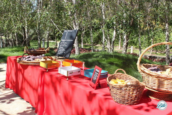 Setup for Appetizers Display