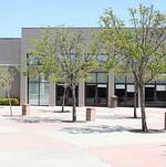 Torrance Cultural Arts Center Torino Plaza Trees