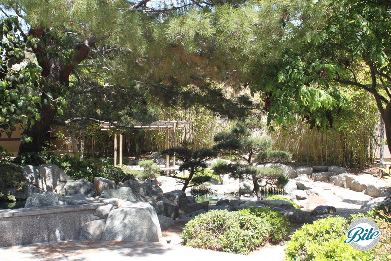 Torrance Cultural Arts Center Pine Wind Japanese Garden Landscape