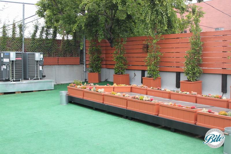 Studio 11 Rooftop Patio