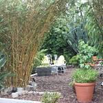 Studio 11 Garden Lounge