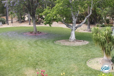 Newhall Mansion Ceremony Lawn