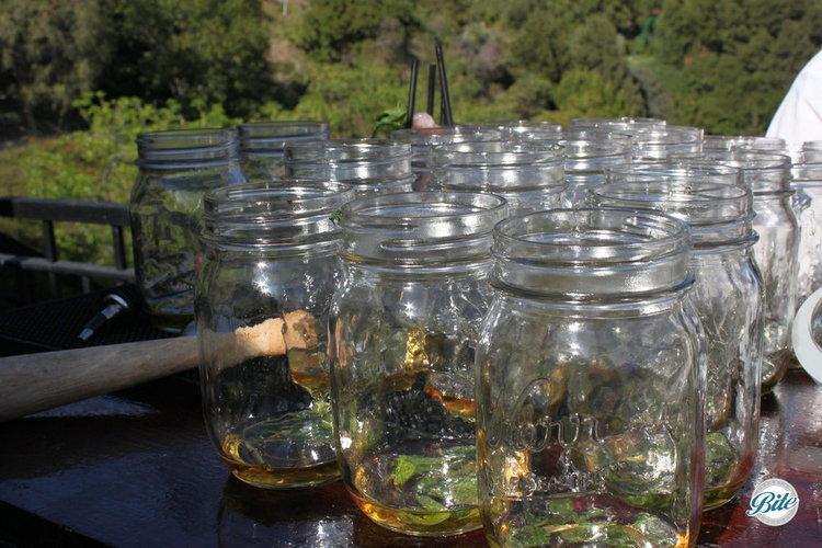 Summer cocktail, seasonal mint julep in mason jars