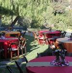 Backyard Party Guest Tables