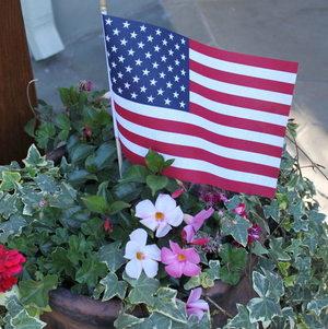 Backyard BBQ Party American Flag