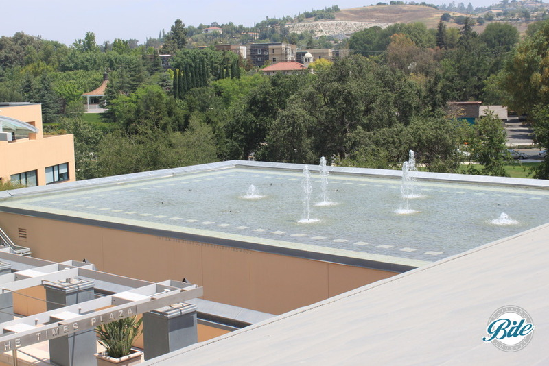 Thousand Oaks Civic Arts Plaza Founder's Room Patio View Fountain
