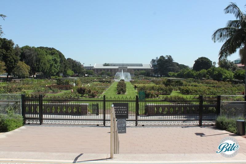 Natural History Museum Exposition Garden
