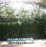 Studio 1342 Garden