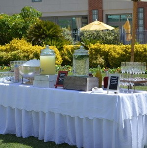 Beverage Display Outdoors on the Lawn